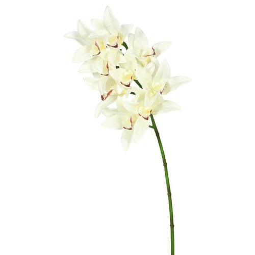 Real Touch Orchid-9 Heads-Cream Floral Stem