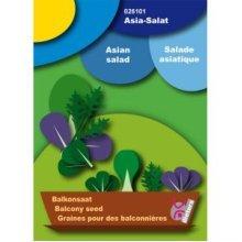 Asia Salad Balcony Seed Set - Asian Salad Balcony Seeds Organic Red Giant Mizuna Window Box Gift Garden Plants