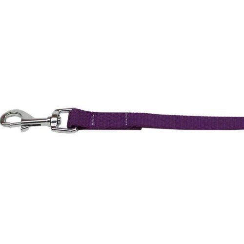 Mirage Pet 124-1 PR3806 Plain Nylon Pet Leash, Purple - 0.37 in. by 6 ft.