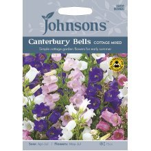Johnsons Seeds - Pictorial Pack - Flower - Canterbury Bells Cottage Mixed - 600 Seeds