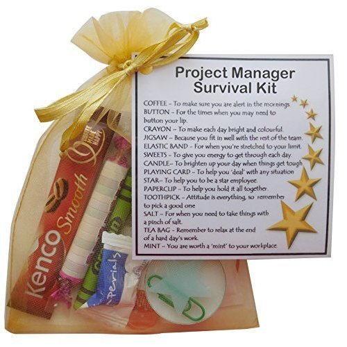 Project Manager Survival Kit Gift  - New job, work gift, Secret santa gift for colleague, gift for Project Manager gift