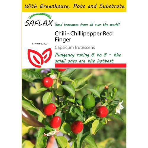 Saflax Potting Set - Chili - Chillipepper Red Finger - Capsicum Frutescens - 25 Seeds - with Mini Greenhouse, Potting Substrate and 2 Pots