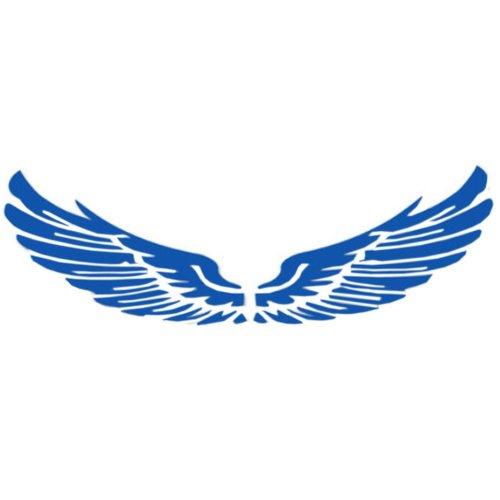 Set of 2 Wings Family Car Stickers Unique Design Car Sticker Blue