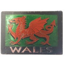 Welsh Wales Red Dragon Foil Stamp Fridge Magnet Souvenir Gift Cymru Small