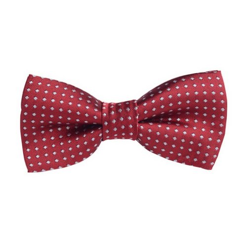 Fashion Designed Adjustable Neck Bowtie Boys Bow Tie [Red, B]