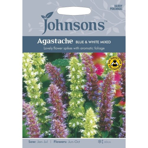Johnsons Seeds - Pictorial Pack - Flower - Agastache Blue & White Mixed - 200 Seeds