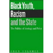 Black Youth, Racism and the State: The Politics of Ideology and Policy (Comparative Ethnic and Race Relations)