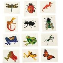 Pack of 12 - Insects & Reptiles Temporary Tattoos - Party Bag Fillers
