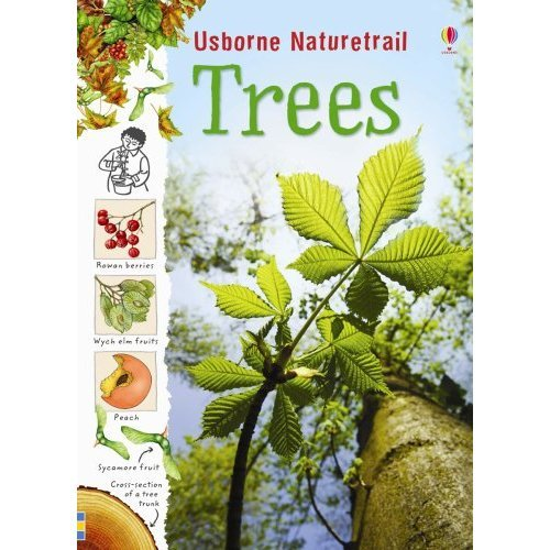 Trees (Nature Trail) (Usborne Nature Trail)