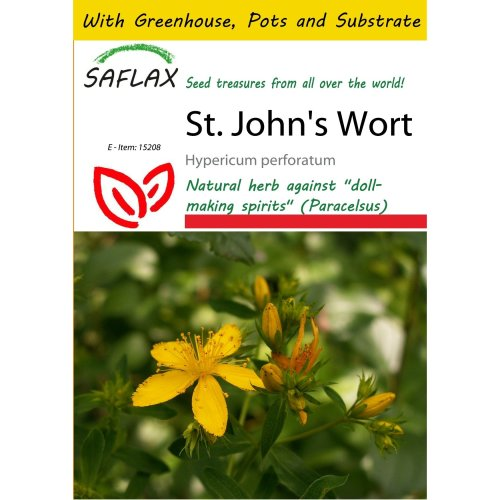 Saflax Potting Set - St. John's Wort - Hypericum Perforatum - 300 Seeds - with Mini Greenhouse, Potting Substrate and 2 Pots