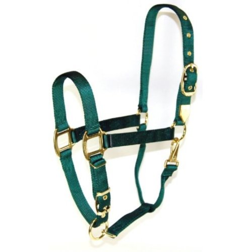 Hamilton 1-Inch Nylon Halter with Adjustable Chin, Dark Green - Yearling Size