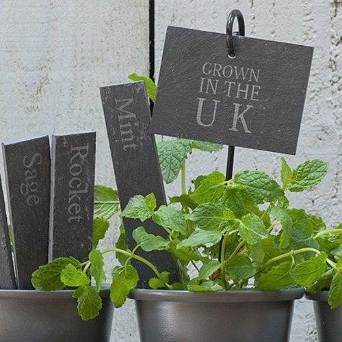 Set of 2 Slate Plant Tags