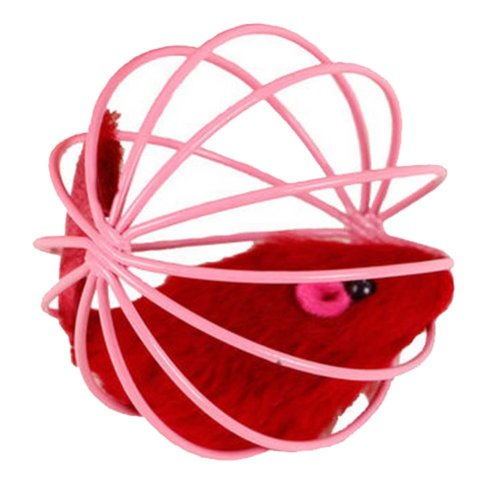 Interactive Educational Toy lovely Cat Toys, B