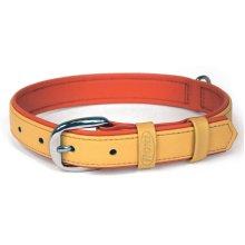 Flexi Summertime 2 Collar Orange Medium